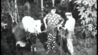 Nujum Pak Belalang (1959) - Part 2