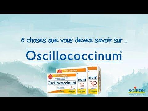 5 choses que vous devez savoir sur Oscillo