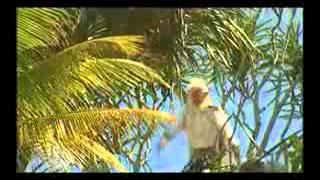 Video Karmapala 06 Ratu siluman buaya MP3, 3GP, MP4, WEBM, AVI, FLV Juni 2018