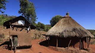 Benna-Dorf Und Teff Dreschen In Äthiopien