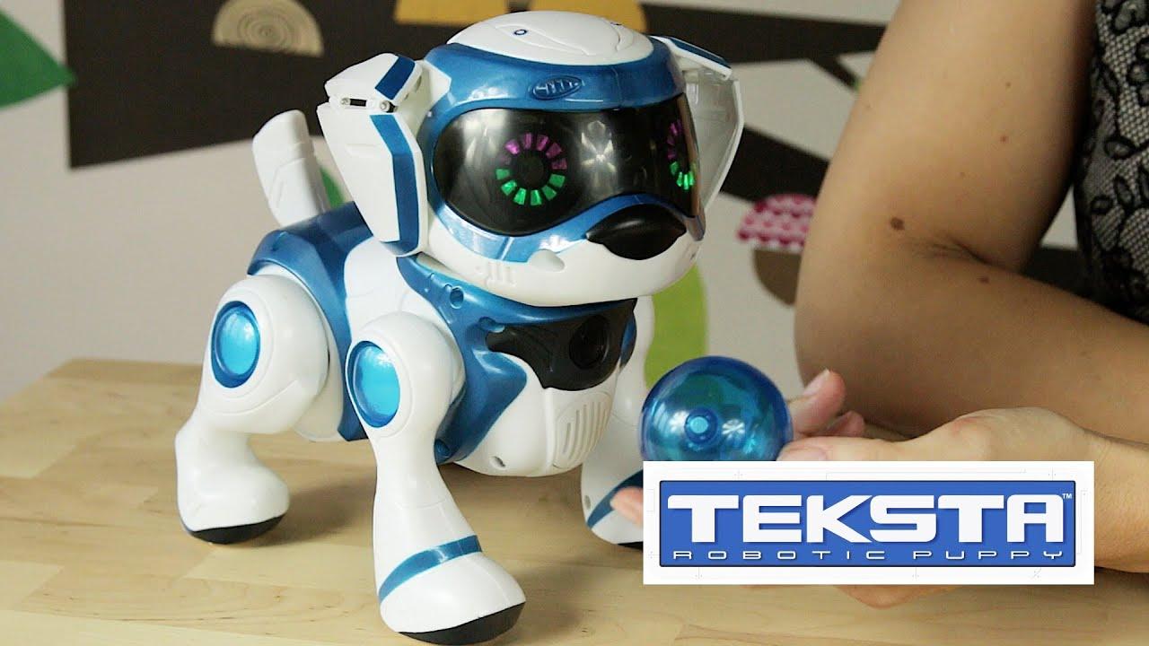 Teksta Robotic Puppy / Teksta Piesek Interaktywny