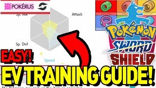 EV TRAINING GUIDE! How to EV Train Your Pokemon for Competitive! Pokemon Sword and Shield! by aDrive