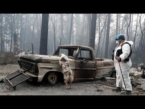 Καλιφόρνια: 65 νεκροί και 600 αγνοούμενοι από τις φονικές πυρκαγιές…