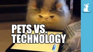 لقطات طريفة لتعامل الحيوانات مع التكنلوجيا