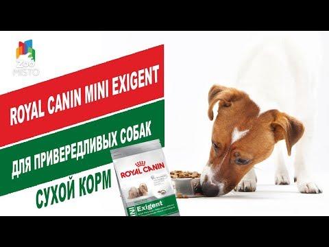 Royal Canin Mini Exigent для привередливых собак