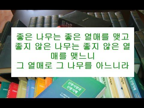 마태복음영해설교12장33-37