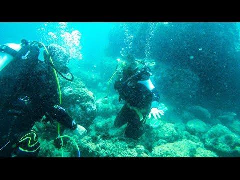 Scuba Diving Basic Practice and Exercises. Italy, Liguria_Búvárkodás. Heti legjobbak