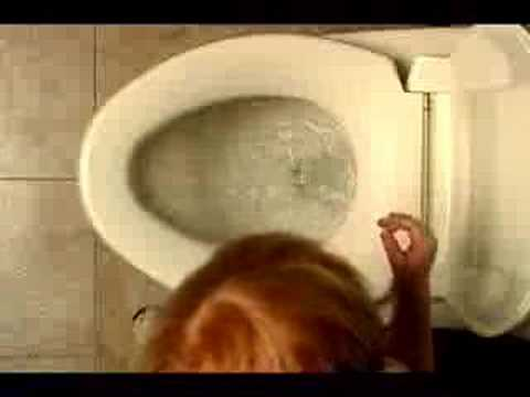 Toto Toilet Commercial (humorous)