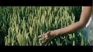 Nonton Cargo 2009  Movie  Film Subtitle Indonesia Streaming Movie Download