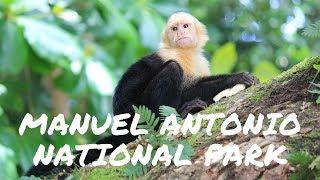 Manuel Antonio Costa Rica  City pictures : Manuel Antonio National Park Costa Rica - Beach, monkeys, park