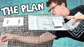 This time we attempt to catch the fat rat, and plan for another squirrel wrangling. Also, a nice little surprise at the end!__SUBSCRIBE ► https://www.youtube.com/channel/UC-tsNNJ3yIW98MtPH6PWFAQ?sub_confirmation=1Main Channel ► https://www.youtube.com/user/iDubbbzTVSecond Channel ► https://www.youtube.com/channel/UC-tsNNJ3yIW98MtPH6PWFAQGaming Channel ► https://www.youtube.com/channel/UCVhfFXNY0z3-mbrTh1OYRXAWebsite ► http://www.idubbbz.com/Instagram ► https://instagram.com/idubbbz/Twitter ► https://twitter.com/IdubbbzFacebook ► http://www.facebook.com/IDubbbzTwitch ► http://www.twitch.tv/idubbbz_