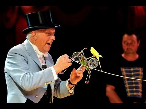 Video Norman Barrett MBE and his amazing budgies: Zippos Circus download in MP3, 3GP, MP4, WEBM, AVI, FLV January 2017