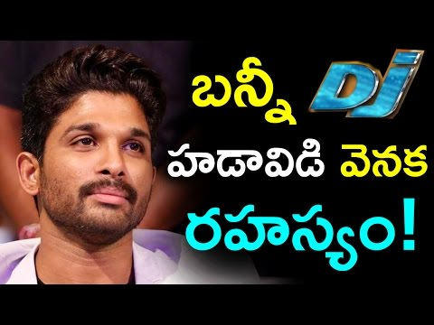 Secret Behind Buzz Created on Bunny's DJ – Duvvada Jagannadham First Look