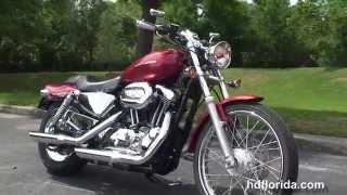 8. Used 2005 Harley Davidson 1200 Custom Motorcycles for sale - Tarpon Springs, FL