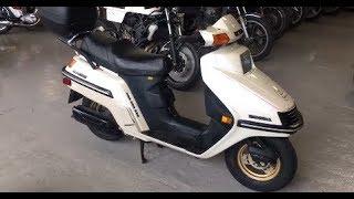 9. 1986 Honda Elite 250 (Cafe Racer SSpirit - Collection)