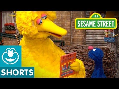 Sesame Street: Celebrate Big Bird's Birthday   Give the Gift of Education