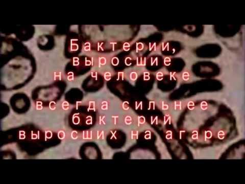 07 Кухня Дьявола  Отряд 731 18+ (видео)