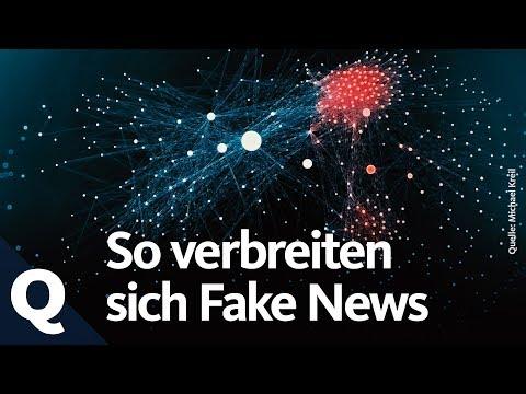 """Der Fall Lisa: Wie Fake News unsere """"Filterblase"""" beeinflussen"""