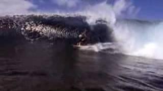 Jack O'Neill - Surf Surf Surf !