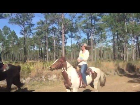 A Family Adventure: Horseback Riding at the Beach