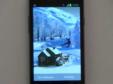 Video of Winter White Live Wallpaper