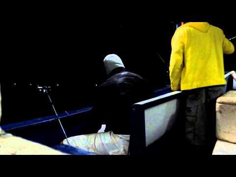 Tavares Ubatuba Pescando a Noite I em Ubatuba (TAVARES)