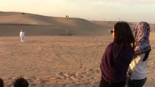 Al Khaznah United Arab Emirates  City new picture : Desert Safari 150307