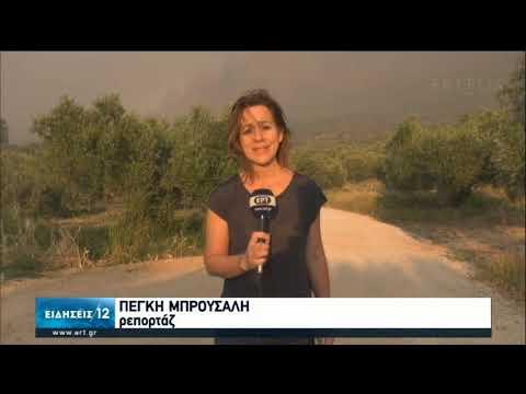 Κόρινθος | Σε εξέλιξη η πυρκαγιά – Εκκενώθηκαν οικισμοί | 23/07/2020 | ΕΡΤ