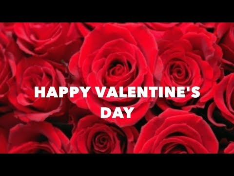 Happy Valentine's Day | WhatsApp Status | Valentine's Day Special Love Status | Wishes | Images