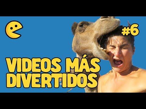 Videos graciosos - VIDEOS más DIVERTIDOS DE INTERNET 2019 #6 (Videos chistosos, caídas, bromas y ANIMALES GRACIOSOS)