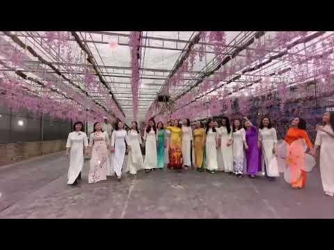 Các cô giáo trải nghiệm thăm vườn hoa lan Hạ Long