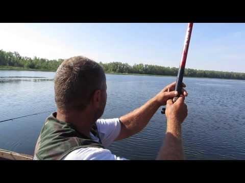 форум саратовских рыбаков сегодня