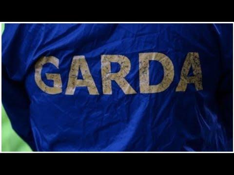 Man remanded in custody after Garda stabbed
