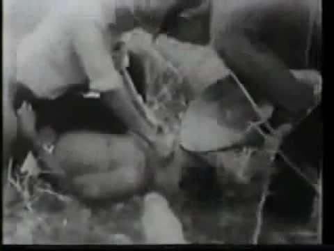 Minh chứng sự dã man và tội ác của lính ngụy VNCH