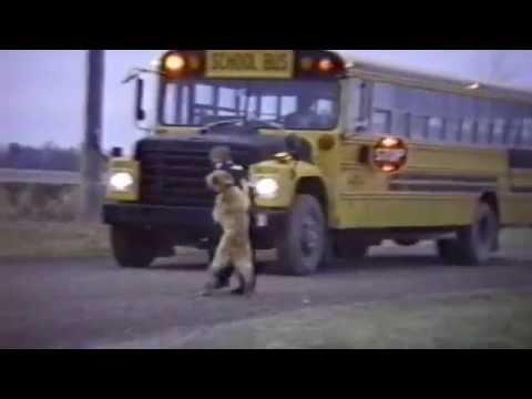 Όταν ο σκύλος σου δεν θέλει να σε αποχωριστεί... για να πας σχολείο!