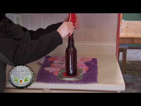The Best Guide to Homebrewing – Part 5 – The Beer Bottling Process