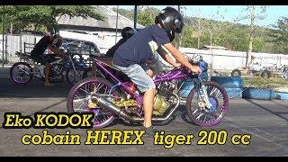 Video kaget Ketika Pak eko Kodok Disuruh Cobain HEREX tiger 200 cc rangka keren,tidak menolak langsung gas MP3, 3GP, MP4, WEBM, AVI, FLV November 2018