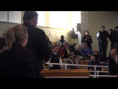2014 Tattersalls October Yearling Sale Book 1: Day 1 Review