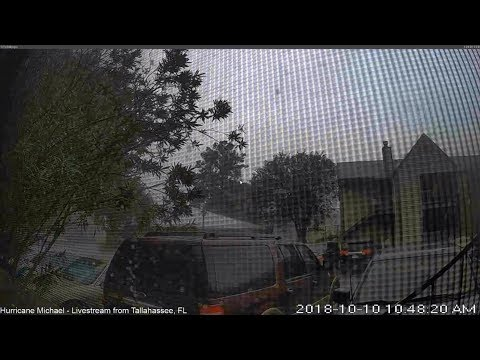 Major Hurricane Michael - Live view from Tallahassee, Fl