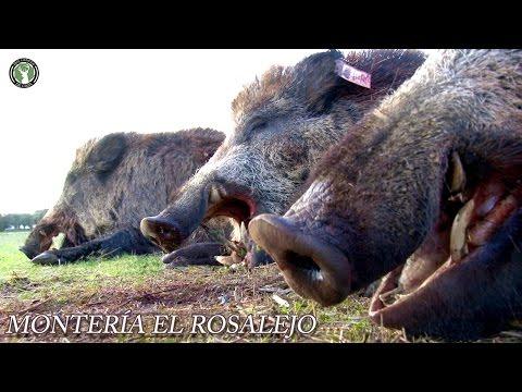 Monteria El Rosalejo