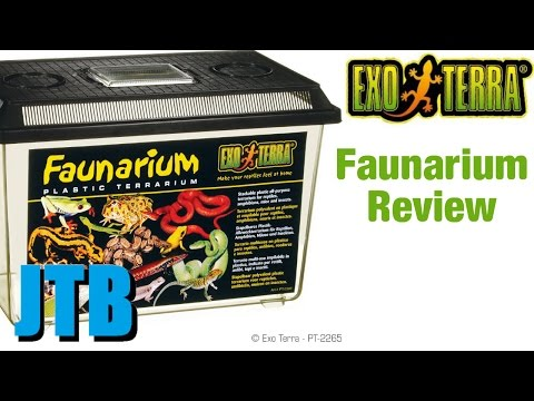 Exo Terra Faunarium Review