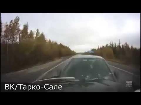 Лоб в лоб: момент смертельной аварии на Ямале попал на видеорегистратор