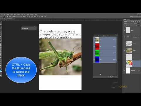 Adobe Photoshop Tutorial 35 - Color, Alpha and Spot Channels