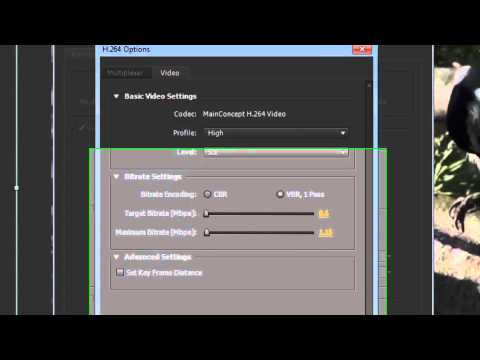 Convert After Effects File Flash 1201