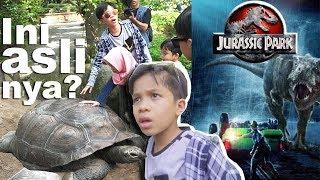 Video Ketemu Hewan Purba , RAHASIA Di Balik Film JURASSIC PARK MP3, 3GP, MP4, WEBM, AVI, FLV Agustus 2018