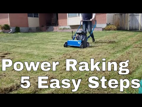 5 Steps Diy How To Power Rake Or De Thatch Your Lawn