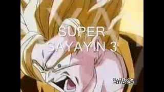 Fases de Goku  12345678 y 9