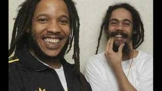Damian Marley Ft. Stephen Marley - Pimpass Paradise