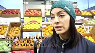 Bronx Market Prepares for Thanksgiving