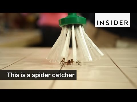 This is a Clever Spider Catcher